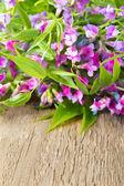 Kır çiçekleri üzerinde ahşap — Stok fotoğraf