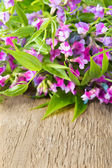 Wild flowers on wooden — Stock Photo