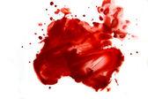 Blood smear splatter — Stock Photo