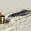 Winter fishing - Stock Photo