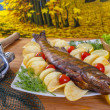 Royalty-Free Stock Photo: Hot smoked fish walleye (sander, pikeperch) fall fishing