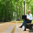 Stock Photo: Elderly businessmis working summer in park using t