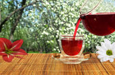 Red tea in the lush garden — Stock fotografie