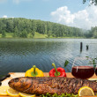 Stock Photo: Summer picnic at lake