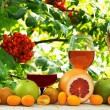 Stock Photo: Wine and fruit