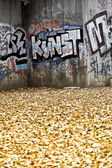 Graffiti Wall And Autumn Leaves — Stock Photo