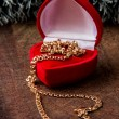 Gold chain in box — Stock Photo #15789157