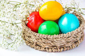 Colored painted eggs in a wattled basket with flowers — Stock Photo