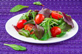 Salad with chard, spinach and tomatoes cherry — Stock Photo
