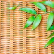 Green leafs on wicker wood — Stock Photo