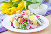 Spring salad with radishes, cucumbers, eggs and crouton — Stock Photo