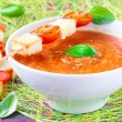 Stock Photo: Vegetable cream soup with tomato and toast