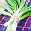 Fresh bunch of green spring onions — Stock Photo