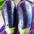Stock Photo: Two fresh eggplant and bunch of green spring onions