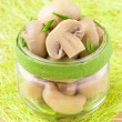 Conserved mushrooms in glass jar — Stock Photo #23863547