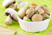 Conserved mushrooms in a white ceramic cup — Stock Photo