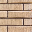 Brick background of pale stone — Stockfoto