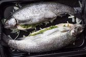 Cooking two fish, rainbow trout stuffed with green sauce and her — Stock Photo