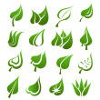 Leaf icon set — Stock Vector