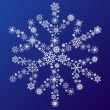 Snowflake — Stock Vector #24477173