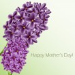 Mothers day card with lilac — Stock Vector
