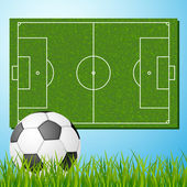 Football field with ball — Stock Vector