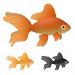 Goldfish set — Stock Vector