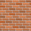 Brick wall texture — Stockvektor #30138393