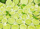 Lime, mint and ice — Stock Photo