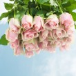 Pink roses on a mirror. — Stock Photo #16929513