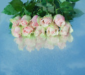 Pink roses on a mirror. — Stock Photo