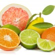Citrus fruit — Stockfoto