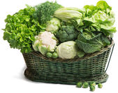 Vegetables in the basket — Stock Photo