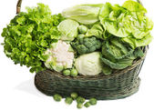 Different types of cabbage — Stock Photo