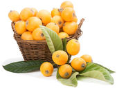 Loquat in basket  — Stock fotografie