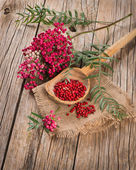 Fresh and dried pink pepper — Stock Photo