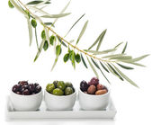 Different varieties of olives marinated in white bowls and twig — Stock Photo