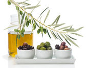 Different kind of olives and branch of olive tree with drops, ol — Stock Photo