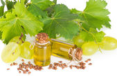 Grape seed oil with grape and grapevine — Stok fotoğraf