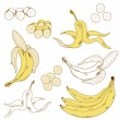 Set of isolated bananas - Stock Vector