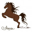 Illustration of rearing up horse — Imagen vectorial