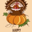 Thanksgiving card with pumpkin and turkey bird — Stock Vector