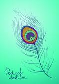 Ilustración con plumas de pavo real — Vector de stock