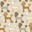 Seamless pattern of poodle dogs — Stock Vector #39899467