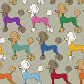 Seamless pattern of poodle dogs — Stockvector