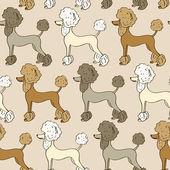 Seamless pattern of poodle dogs — Stockvektor