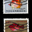 Group of canceled colorful fish stamps — Stock Photo