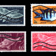 Group of canceled colorful fish stamps — Stock Photo #18023381