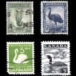 World Wildlife Stamps Birds - Stock Photo