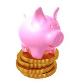 Prasátka na zásobníku mincí — Stock fotografie